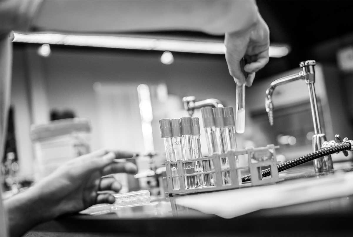 biology black and white