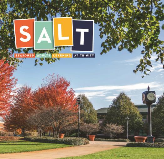 SALT logo on brohcure