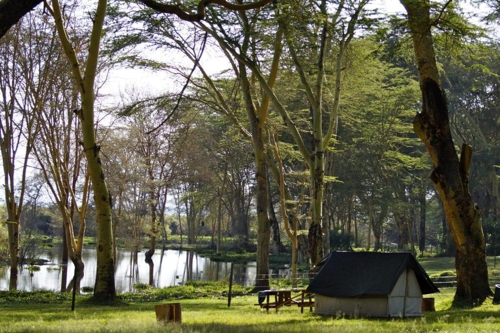 cabin at lake