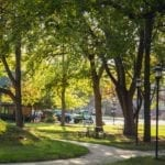 Virtual Background - Trinity Tab Lawn